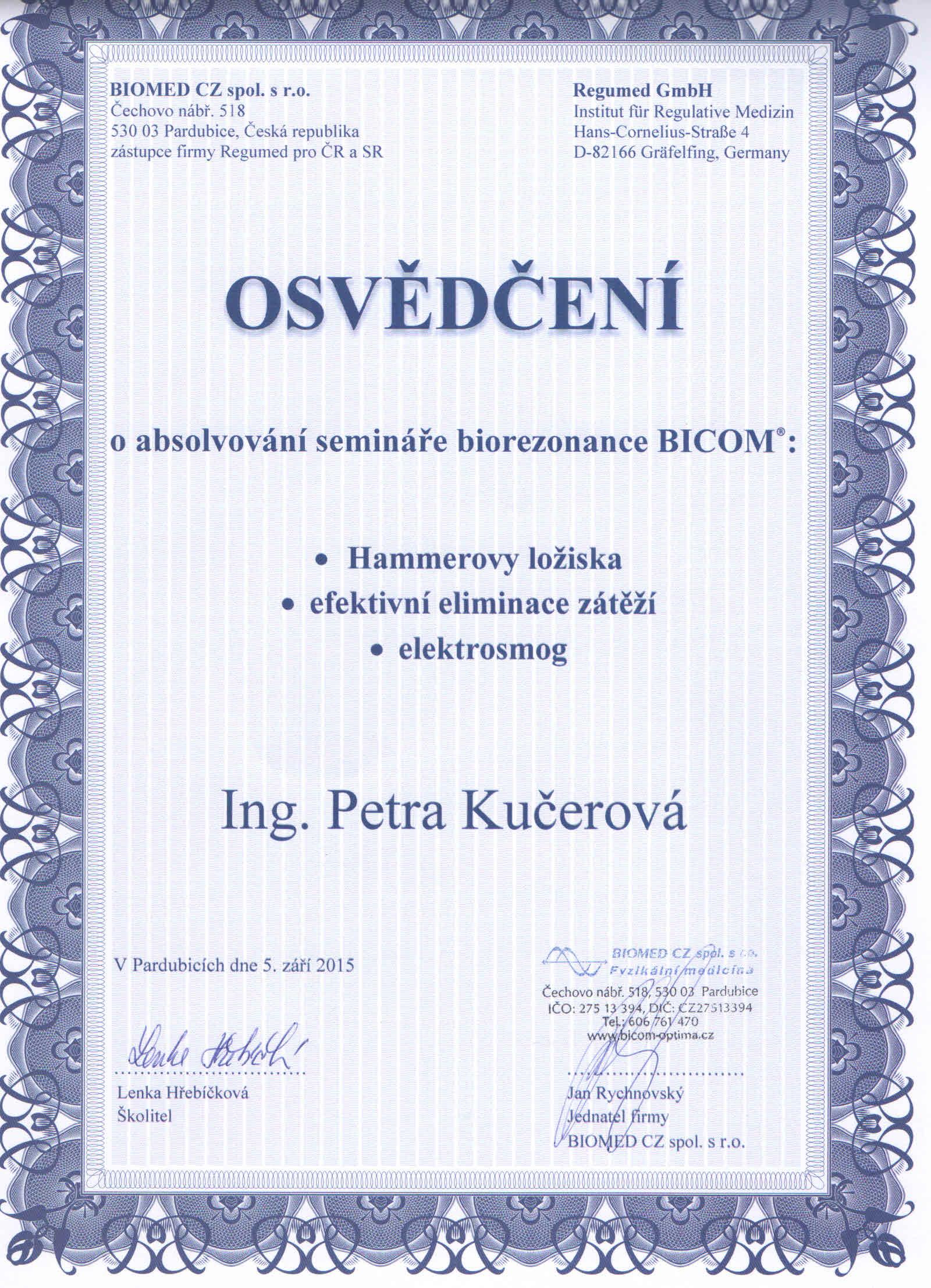 diplom 3